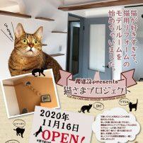 猫さまプロジェクトモデルルームOPEN!